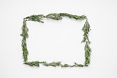 Frame made of fresh rosemary on white background