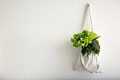 Eco bag with fresh vegetables hanging on wall