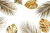 Gold palm and monstera leaves plant pattern frame isolated on a white background. top view. copy space. abstract.