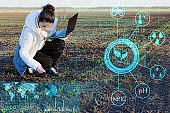 a farmer using a laptop and modern technology analyzes the data on humidity, temperature, light acidity, fertilizers and pests to increase yield