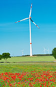 Modern wind turbine in flower field with red poppy and blue cornflowers. Alternative green energy, eco-friendly sustainable lifestyle, trendy technology.