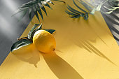 Illuminating Yellow and Ultimate Gray, colors of the year 2021. Fresh lemon with exotic palm leaves on two tone yellow grey background