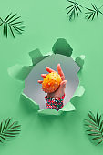 Kiwano, small exotic orange spiky fruit in human hand showing the fruit out of paper hole in tropical green geometric background with palm leaves