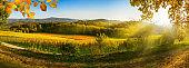 Panoramic rural landscape in autumn