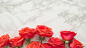 Red roses on a marble background.