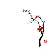 Sakura cherry tree blossom on white background. Traditional oriental ink painting sumi-e, u-sin, go-hua. Hieroglyph - blossom.