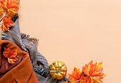 Trendy warm clothes. Set of seasonal autumn fashion woman clothes.
