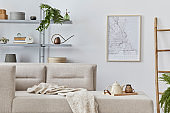 Scandinavian interior with stylish sofa, design furniture, bookcase, plants, decoration, mock up poster map and elegant personal accessories. Neutral living room in classic house. Template.