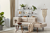 Cozy interior with stylish sofa, grey coffee table, bookcase, plants, carpet, decoration, beige macrame and elegant personal accessories. Neutral living room in classic house. Template.