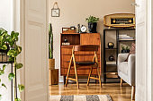 Stylish and vintage interior design of open space with wooden retro cabinet, design chair, sofa, shelf, radio, cacti, plants and elegant personal accessories. Template. Modern vintage home decor.