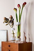 Stylish and floral composition of beautiful flowers in modern vases on the retro wooden commode with elegant accessories. Blossom concept with shadows on the beige wall. Interior design. Template.
