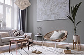 Modern boho interior design of living room with design rattan armchair, gray sofa, coffee table, tropical plants, carpet and elegant accessories. Stylish home decor. Abstract paintings. Template.