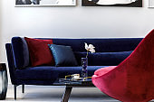 Stylish and modern living room interior with blue velvet sofa, mock up paintings, design black lamp, plant, table, decoration, concrete floor, elegant personal accessories in home decor.
