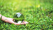 A hand holding crystal glass ball in the grass field