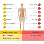 Heat exhaustion and heast stroke infographic