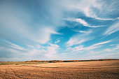 Countryside Rural Field Landscape Under Clear Sunny Autumn Blue Sky. Skyline. Agricultural Landscape With Dry Grass