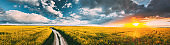 Elevated View Of Sunshine During Sunset Above Rural Landscape With Blooming Canola Colza Flowers. Sun Shining In Dramatic Sky At Sunrise Above Spring Agricultural Rapeseed Field And Country Road. Panorama