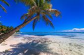 Idyllic Beach with boats and yachts in Punta Cana – Saona island, Caribbean