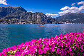 Lake Como and Alpine landscape from Bellagio with azalea flowers - Lombardy, Italy