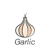 garlic hand draw icon. Element of farming illustration icons. Signs and symbols can be used for web, logo, mobile app, UI, UX