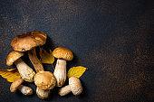 Autumn background with mushrooms and leaves. Mushroom boletus on dark table. Autumnal composition with cep mushrooms boletus on rustic background close up. Cooking mushroom