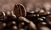 Magic beans are real - it's called coffee