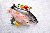 Fresh whole salmon and red snapper fish seafood uncooked on ice