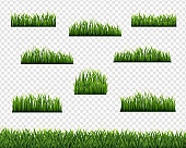 Green Grass Borders And Transparent Background
