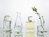 the production of perfume. Several glass vessels with perfumed water and flowers on a mirrored table