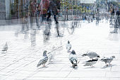 Abstract city life, pigeons and a crowd of people are walking in the shopping street, multiple exposure and motion blur, copy space