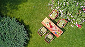 Decorated table with cheese, strawberry and fruits in beautiful summer rose garden, aerial top view of table food and drinks setting outdoors from above. Leisure and picnic with family and friends