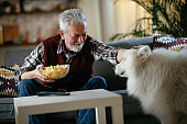 Senior man with his dog enjoying at home.