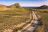 Aerial photography of a typical Mediterranean landscape with vineyards and a road to the sea.