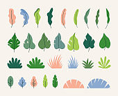 Vector collection of simple flat green leaves, plants and trees