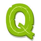 Letter Q, green leaves summer vector alphabet.