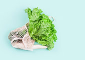 Vegetables, spinach leaves, lettuce, green onions, radishes, cabbage in a string shopping bag for food. Zero waste