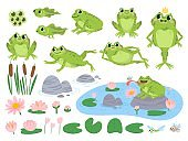 Cartoon frogs. Green cute frog, egg masses, tadpole and froglet. Aquatic plants water lily leaf, toads wild nature life vector set