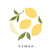 Stylish lemons vector design. Contemporary art print. Abstract hand drawn lemon fruit and leaves for postcards, print, posters, covers, etc.