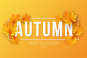 Autumn seasonal banner with maple leaves in frame on orange background. Festive template for design your advertisement. Greeting card. Vector illustration.