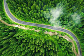 Aerial view of road in beautiful green forest in low clouds at sunset in summer. Colorful landscape with roadway in fog, pine trees in Carpatian mountains. Top view of highway. Travel in Ukraine