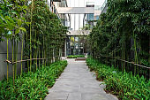 Green environment of office buildings in science and technology park, Chongqing, China