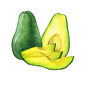 Ripe whole, cut in half and avocado slices (also called an avocado pear, butter fruit or alligator pear). Hand drawn botanical watercolor painting illustration isolated on white background.