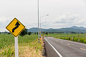Sign curved road on the way at the natural  Field Or Meadow. Warning attention Right curve sign at Rural highway. Road sign showing curves ahead
