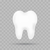 Realistic tooth illustration. Dental care and tooth restoration
