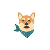 Unhappy and upset shiba inu dog crying, emotions of a pet.