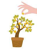 Cartoon money tree in flower pot.
