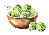 Bowl with Brussels sprouts. Hand drawn watercolor illustration, isolated on white background