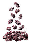 Falling dried dark raisins. Hand drawn watercolor illustration isolated on white background