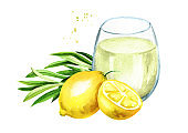 Glass of Homemade lemonade with tarragon, summer drink. Watercolor hand drawn illustration, isolated on white background