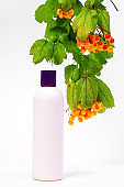 Bottle of cosmetics made of eco-friendly recyclable plastic on white background decorated with bunch of hawthorn berries with green leaves hanging from the top, copy space